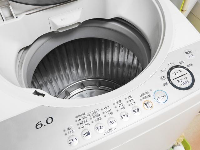 新しい洗濯機でもおそろしいほどの汚れがある場合があります